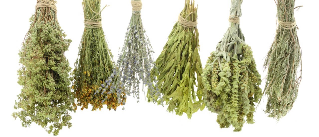 Medicinal and Aromatic Herbal Plants